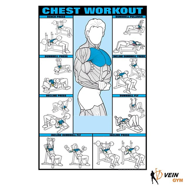 Chest Workout Lapband For Men